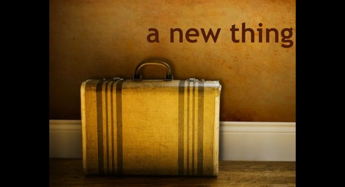 A New Thing Suitcase