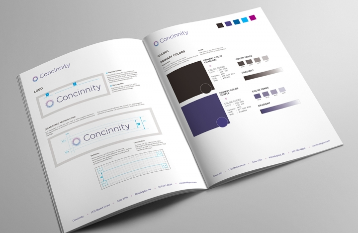 Concinnity Brand Standards Manual Logo and Color Palette